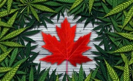 Cannabis legal in Canada