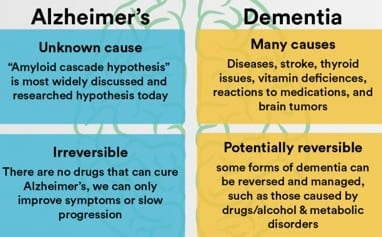 Alzheimer's and Dementia differences