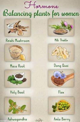 Natural Hormone Health Women