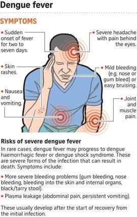 Symptoms risks dengue fever