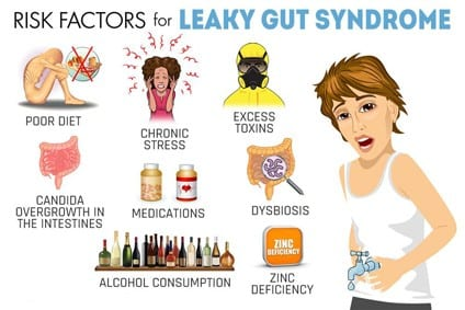 Lazy gut risk factors