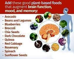 Foods Improve Brain Health. Types