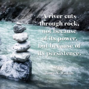 Persistence to succeed.
