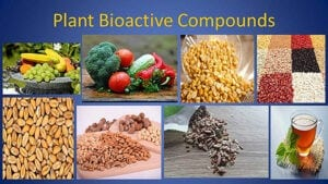 Bioactive seeds, compounds. Images