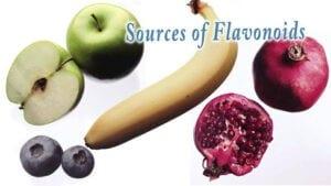 Bioactive Flavonoids. Fruit images